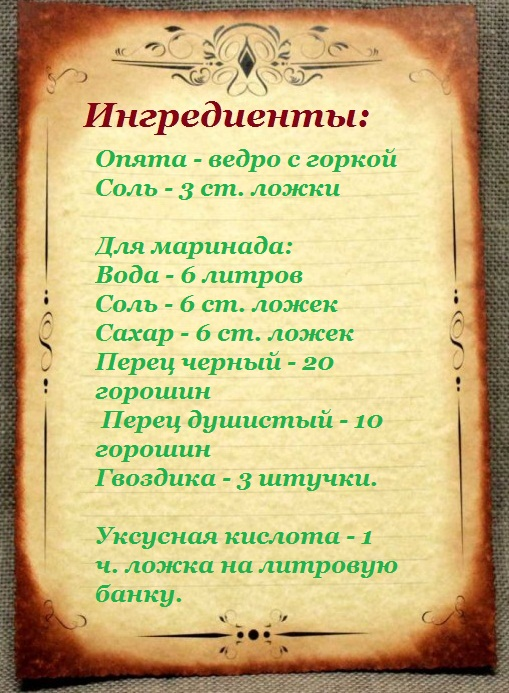 marinovannye-opyata-na-zimu-bankax