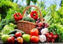 Лунный посевной календарь на 2019 год. Для садовода и огородника с таблицами и фазами луны